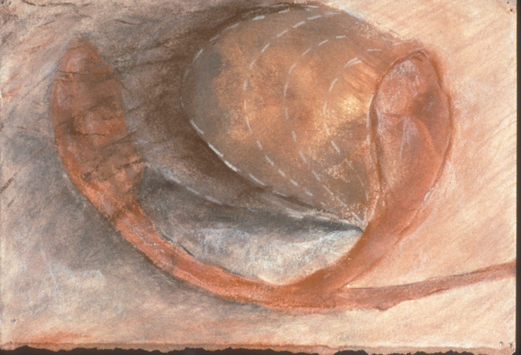 """Portrait of an Ovary Returning to Health  1990  Mixed media on paper, 4 x 6""""."""
