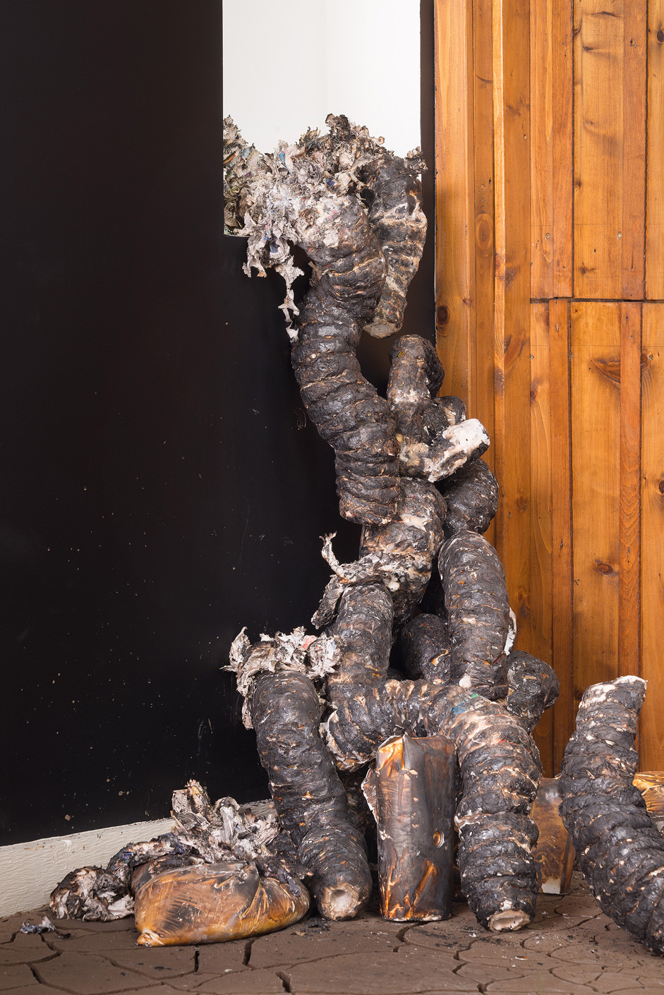 """Installation detail of charred organic forms shedding their skins as they """"climb"""" through window."""