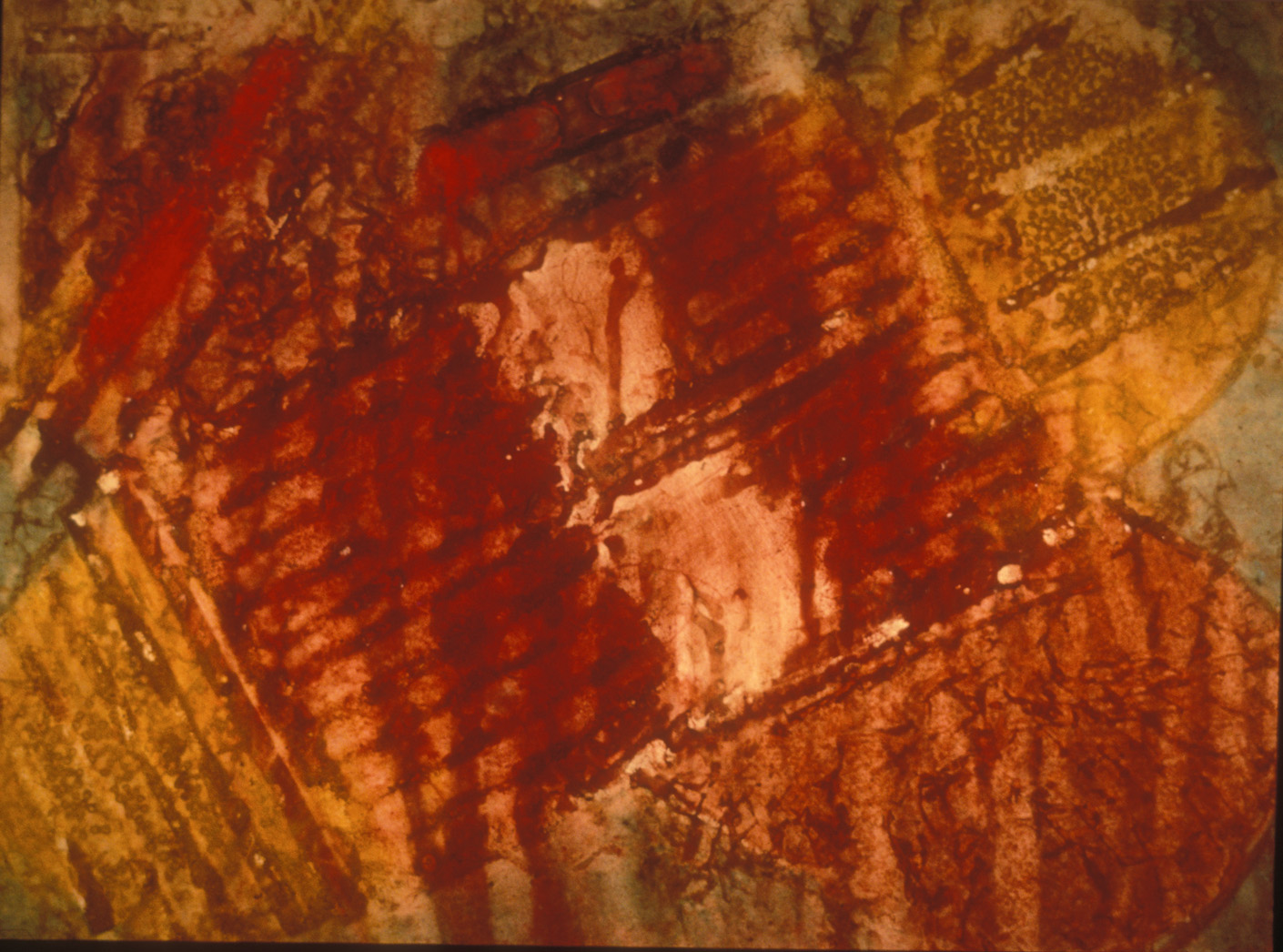 """Lobster Trap  1987   Dry pigment stains on paper, 36 x 44""""."""