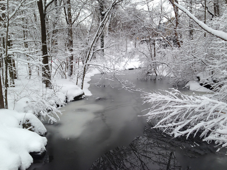 The Loch in the Ravine, North Woods, three days before the Sound and Sight Walk. (photo: Karen McCoy)