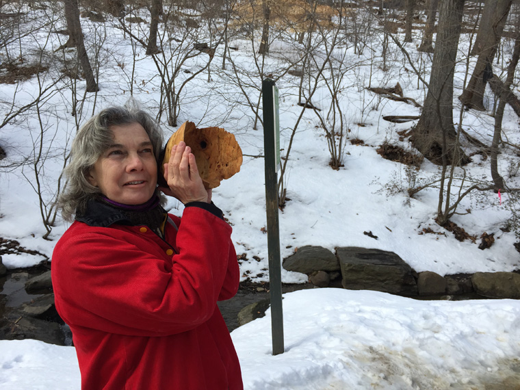 Maureen listening intently in the North Woods, Sound and Sight Walk, Central Park, New York City, March 8, 2015, hand carved wooden burl trumpet in use, walk planned and led by Karen McCoy by invitation of the Walk Exchange, NY. (photo: Karen McCoy)