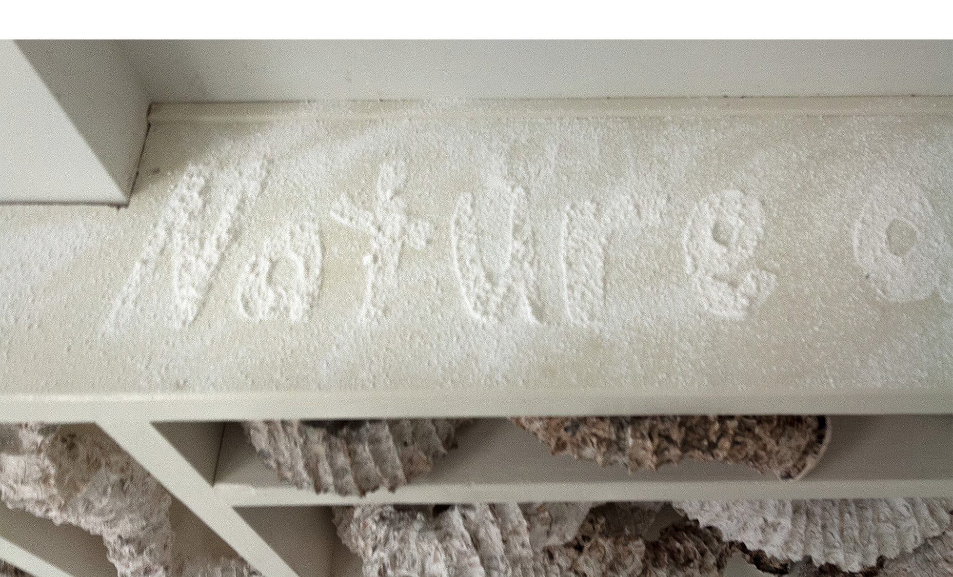 """Installation detail of bookcase surface, text from Wes Jackson stenciled in powdered plaster """"Consult the genius of the place . . . nature as measure""""."""