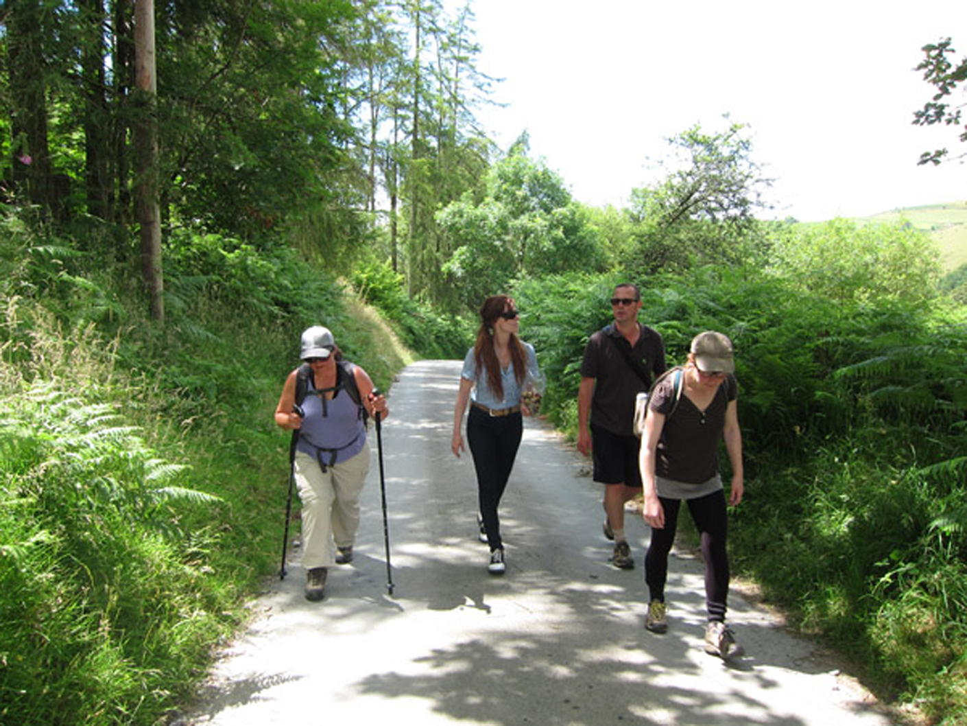 Footwork members walking with Jess Owens to the wind turbine array in the Welsh countryside that was the subject of her film. L to R, Micha Meyers, Moira Williams, Mark Hunter and Clare Qualman