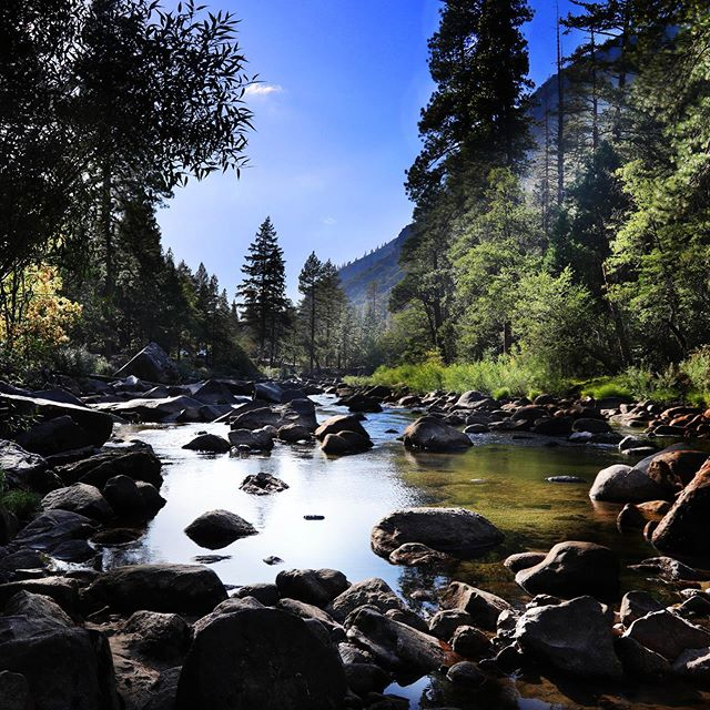 Serenity #naturephotography #yosemite #sacredriver #wearenature