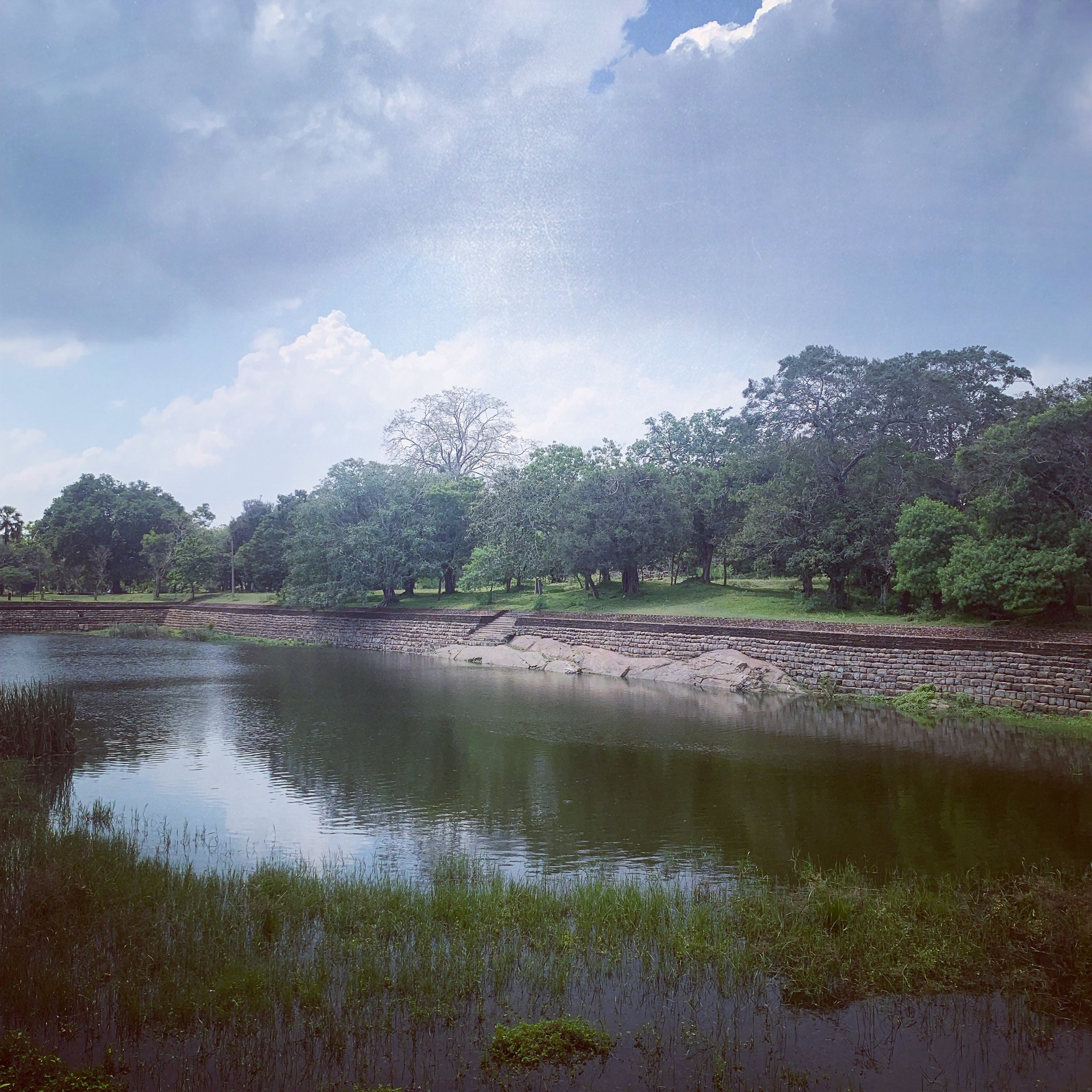 Elephant Pond, Abhayagiri Monastary