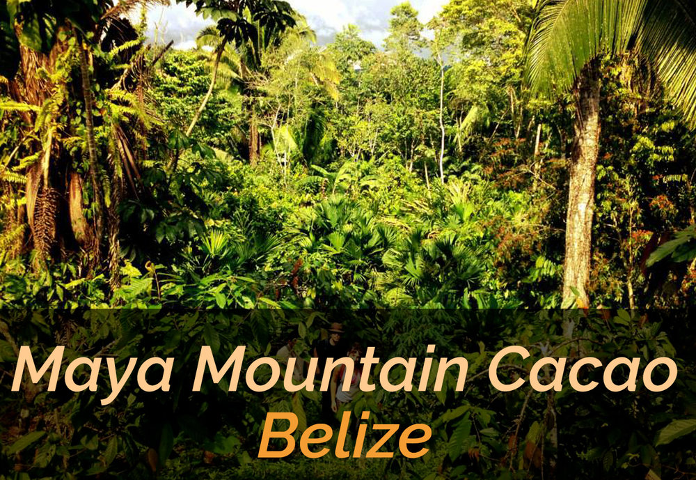 Maya-Mountain-Belize-Desktop-.jpg
