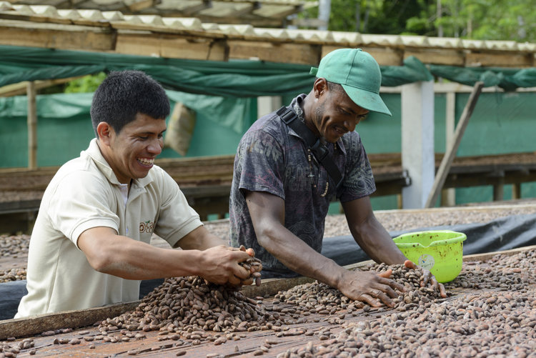 CacaodeColombia-6905.jpg