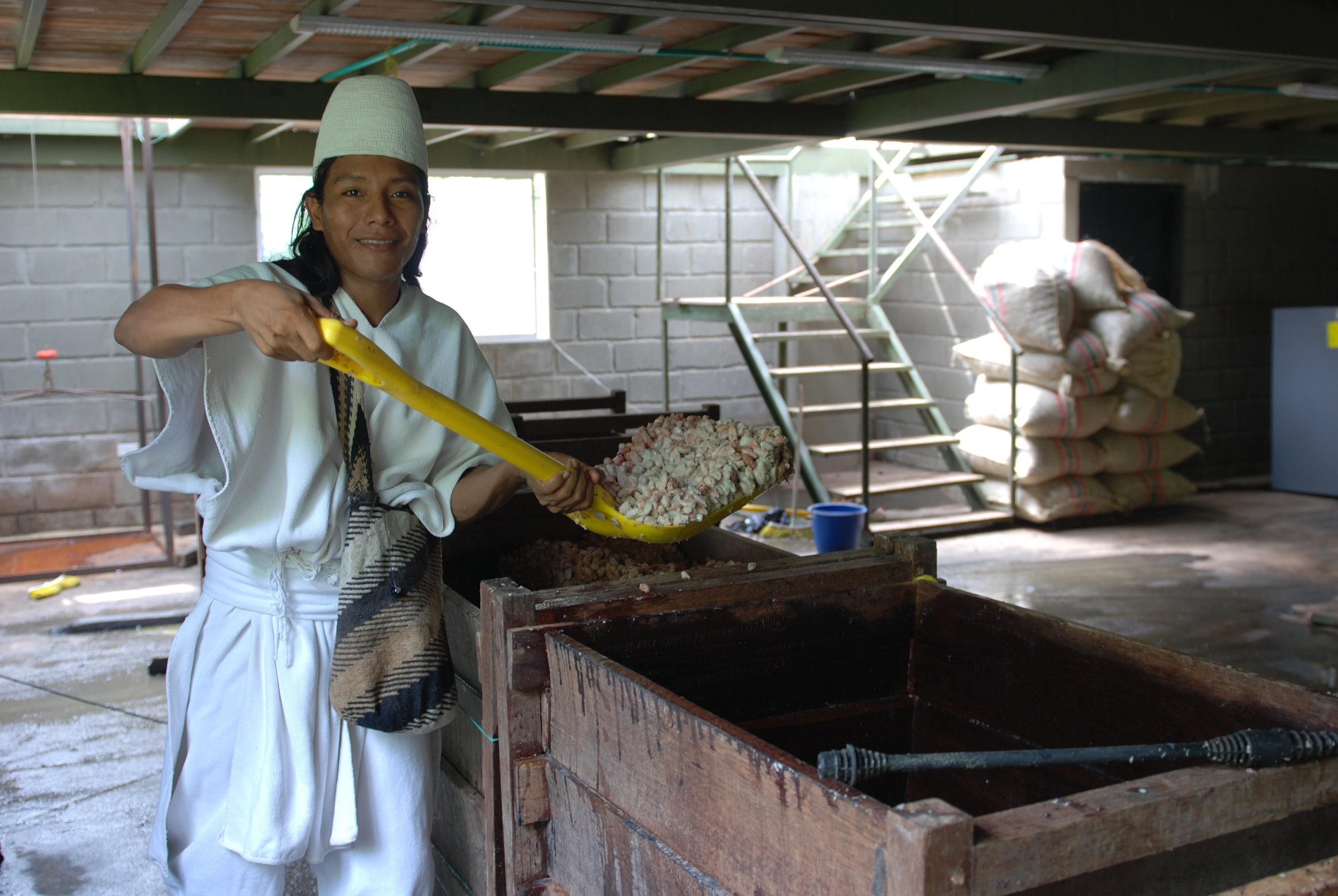 arhuacos Fermentation (1).JPG
