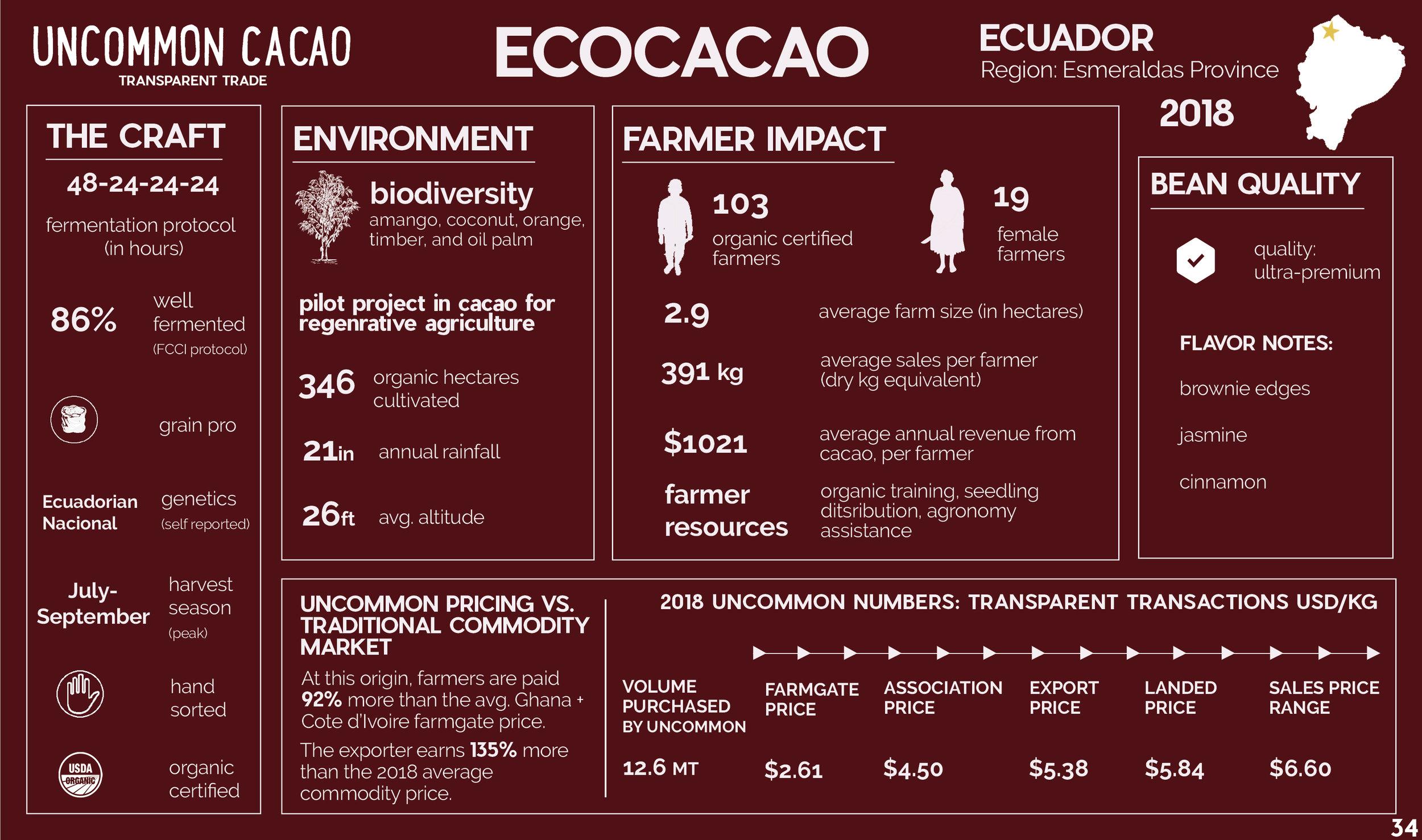 Eco Cacao.jpg