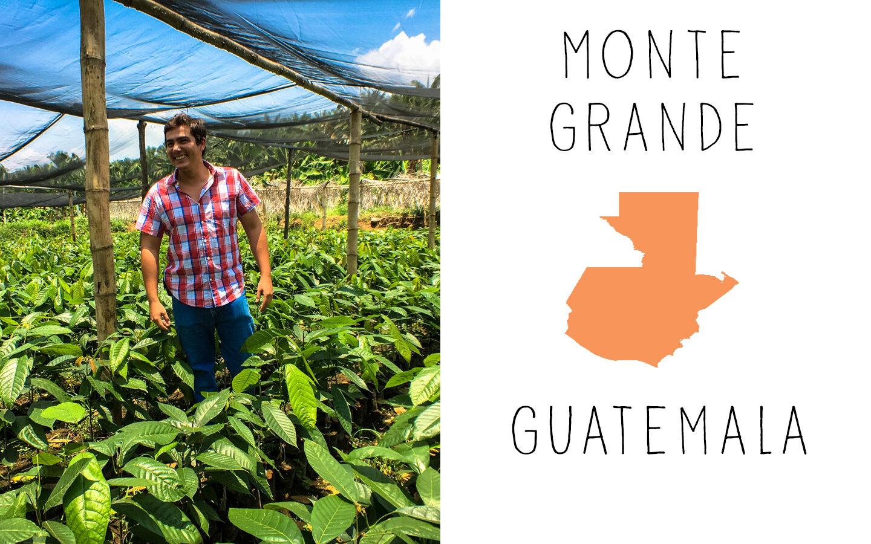 Monte-Grande-Tile.jpg