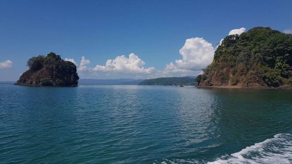 Playa-Juanito-Mora-Whale-Resort-19.jpg