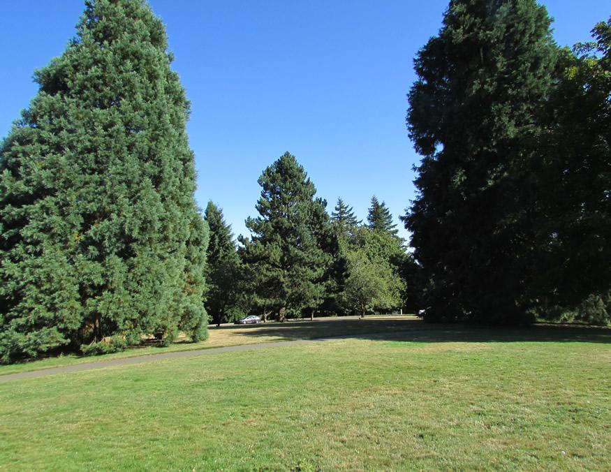 Council Crest park i.jpg