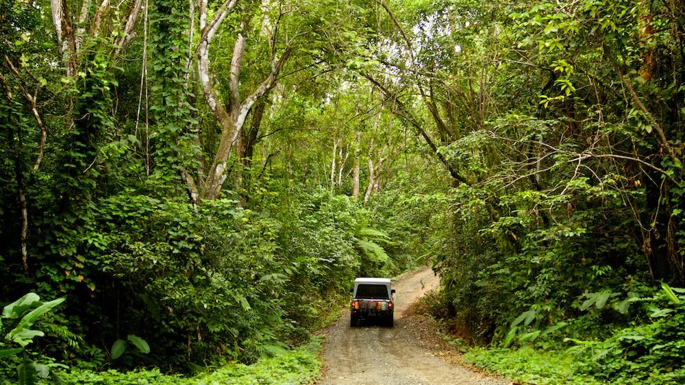 jeep road.jpg