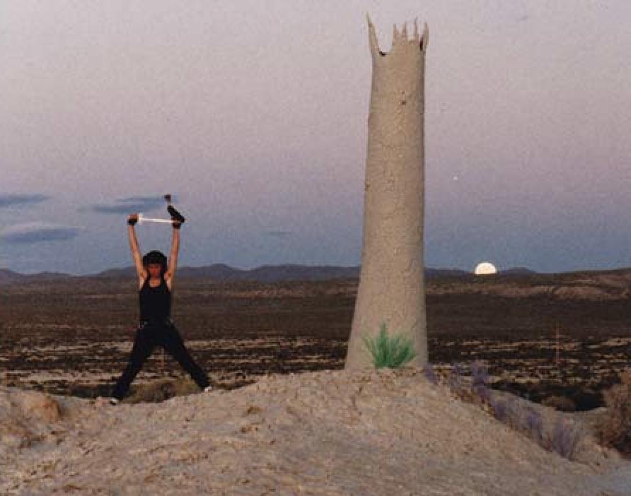 Pepe Ozan's Lingam, Desert Siteworks, 1993