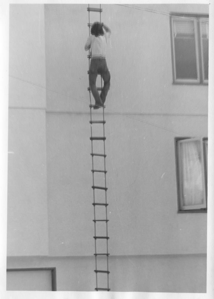 JL-Suicide-Club-rope-ladder.jpg