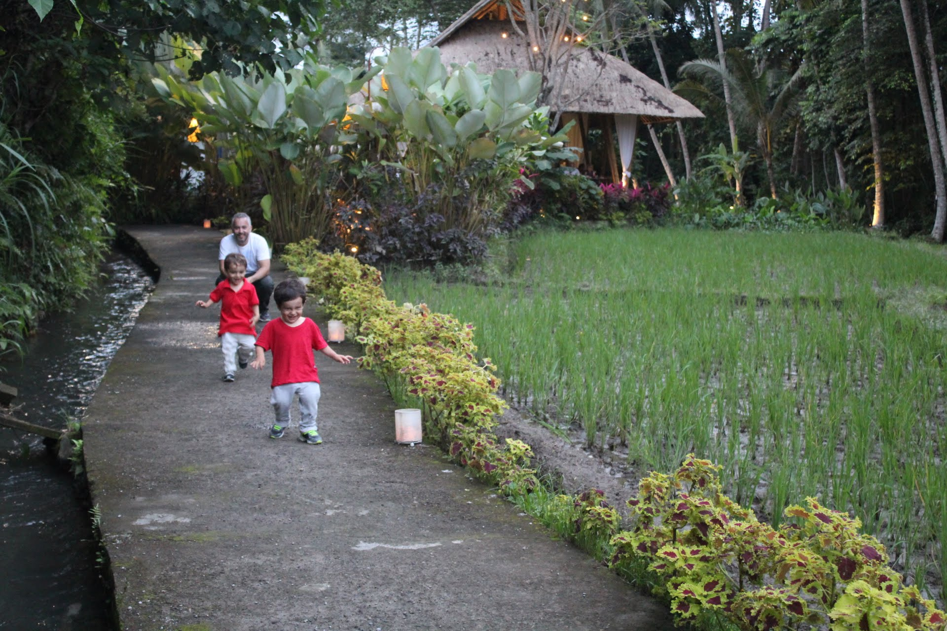 Restaurante Sacred Rice