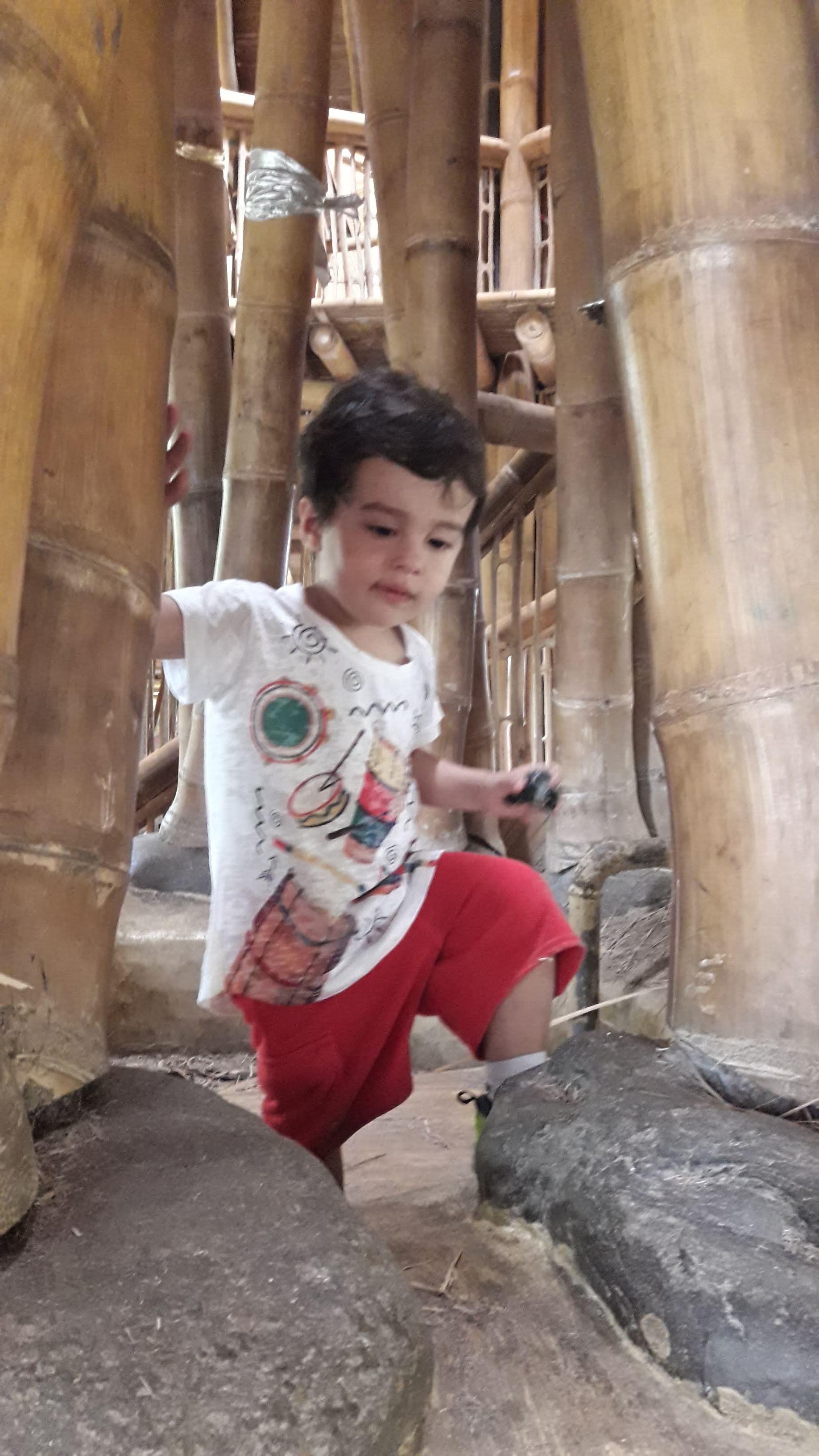 Instrumento musical. Passando as mão os bambus emitem som. Local chamado de coração da escola..