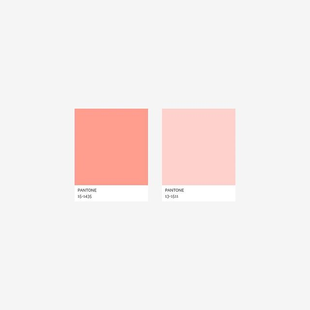 Coral Stripe Pantone colors.