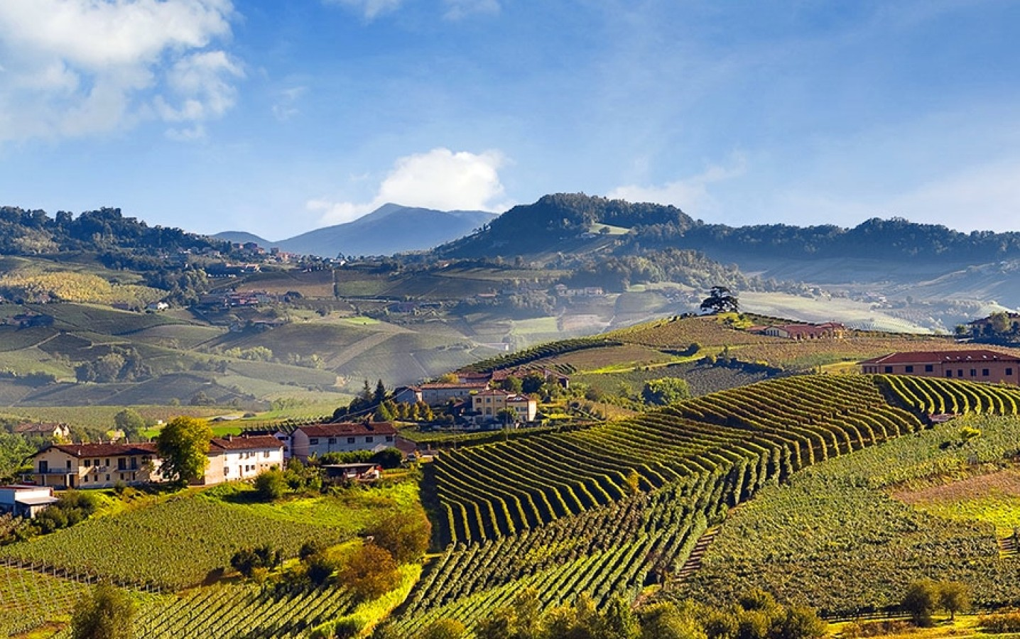 Piedmont's Langhe region, a UNESCO World Heritage Site