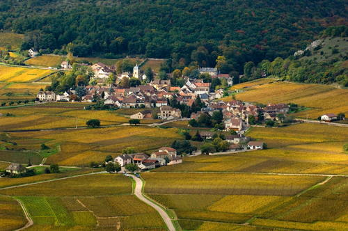 Burgundy's Chambolle Musigny, a UNESCO World Heritage Site