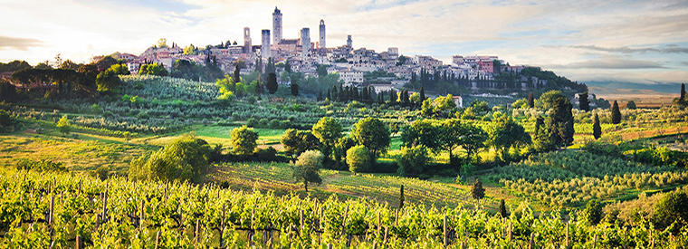 The village of San Gimignano and its famed towers