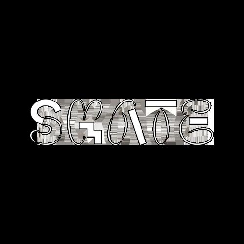 Skate_White.png