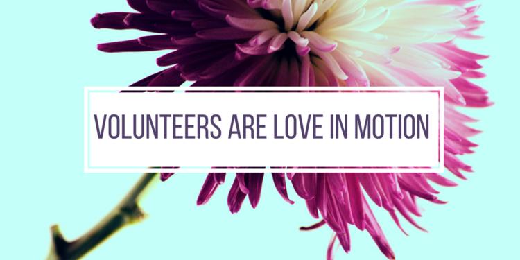 volunteer+banner.png