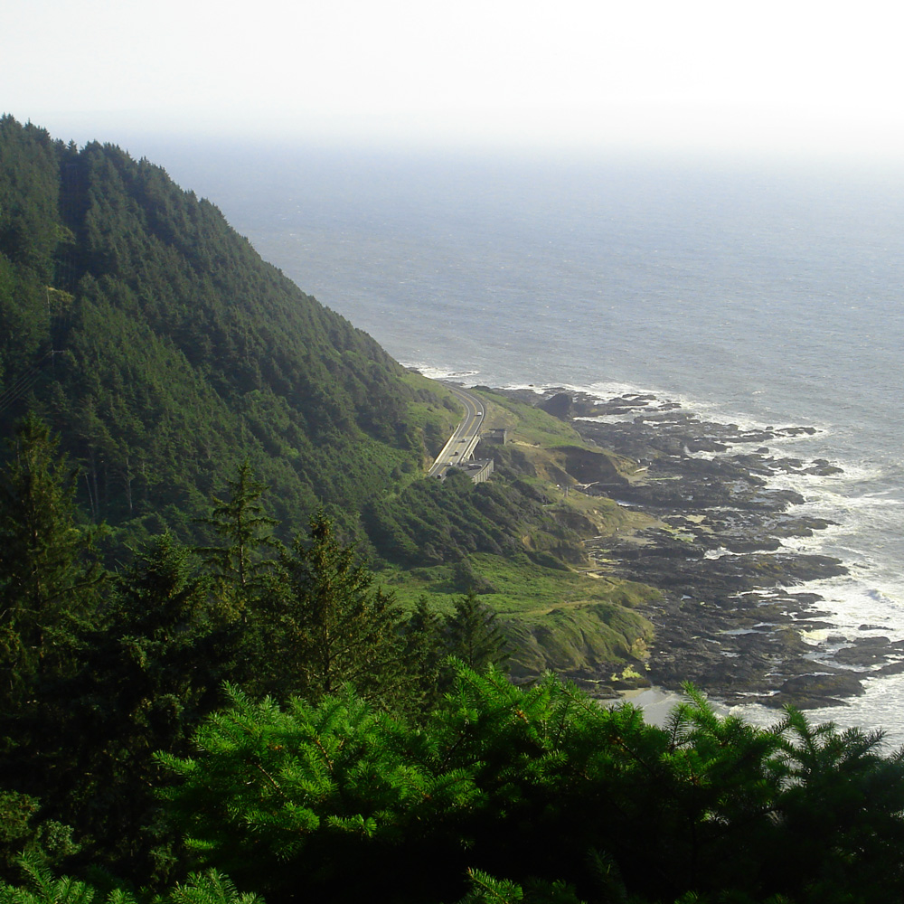cape-perpetua-south-view-graham-styles.jpg