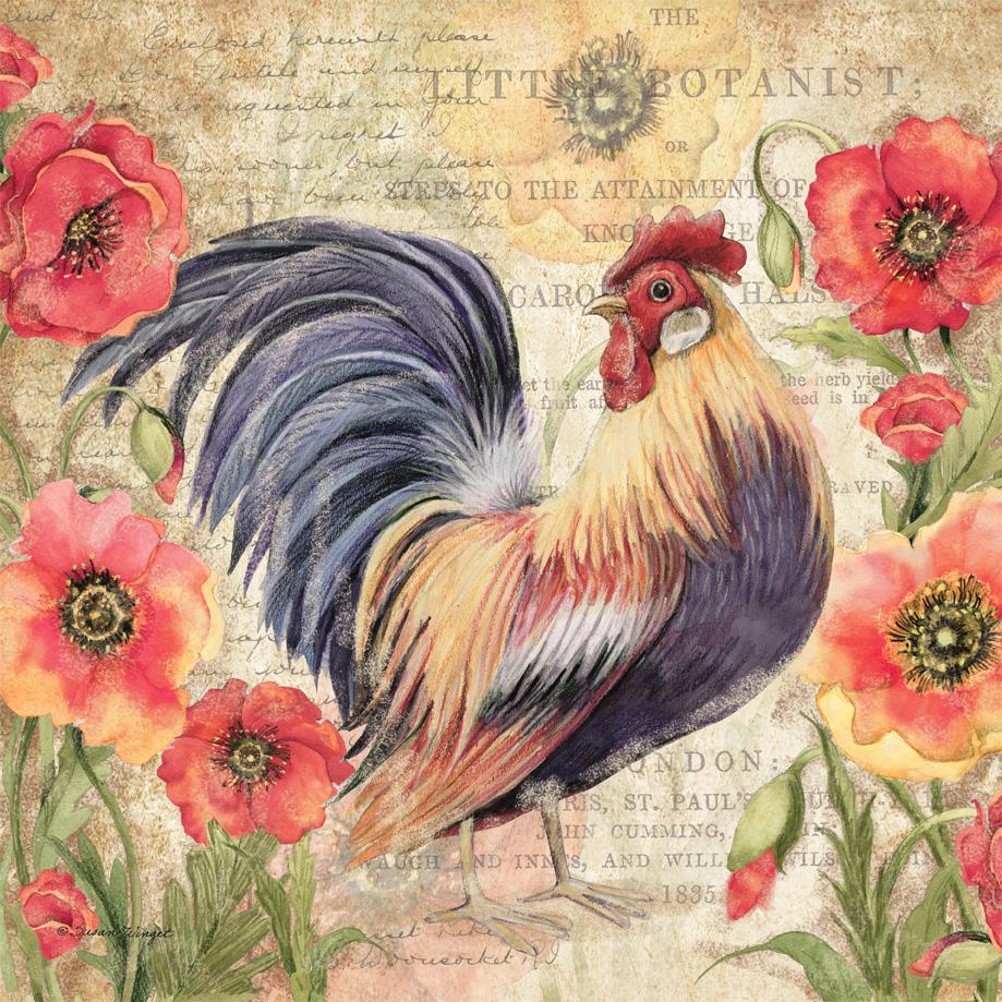 PR18-8b PoppyRooster-COVER copy.jpg