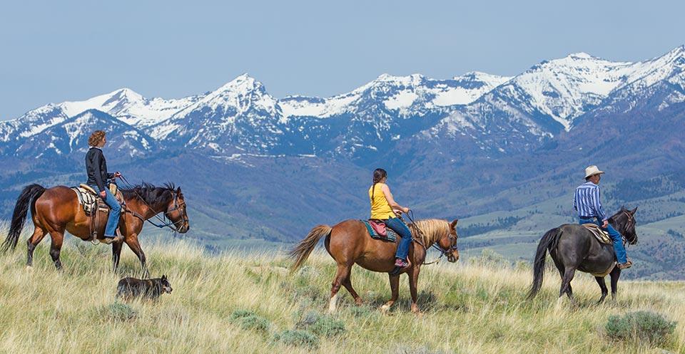 horseback-riding-montana-summer.jpg