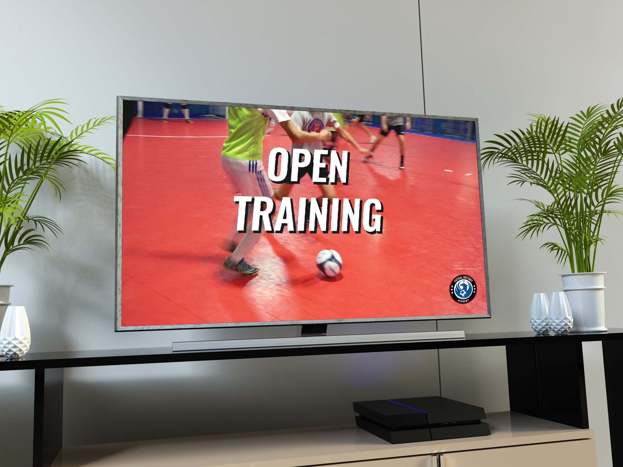 MIFFA Open Training Video