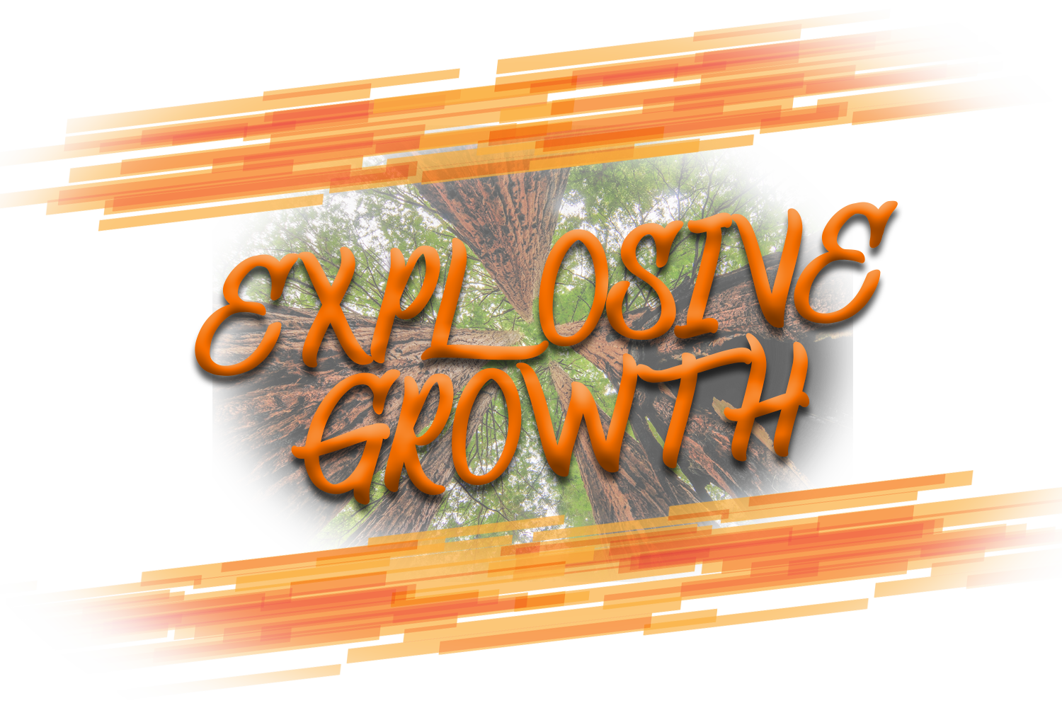 $2,595 - Explosive Growth PackageSet your business up for success for months and years to come with a powerful new website. Your current one can be transferred, rebuilt, revitalized, and regrown.This package includes discounts on business cards, social media services, and site maintenance!