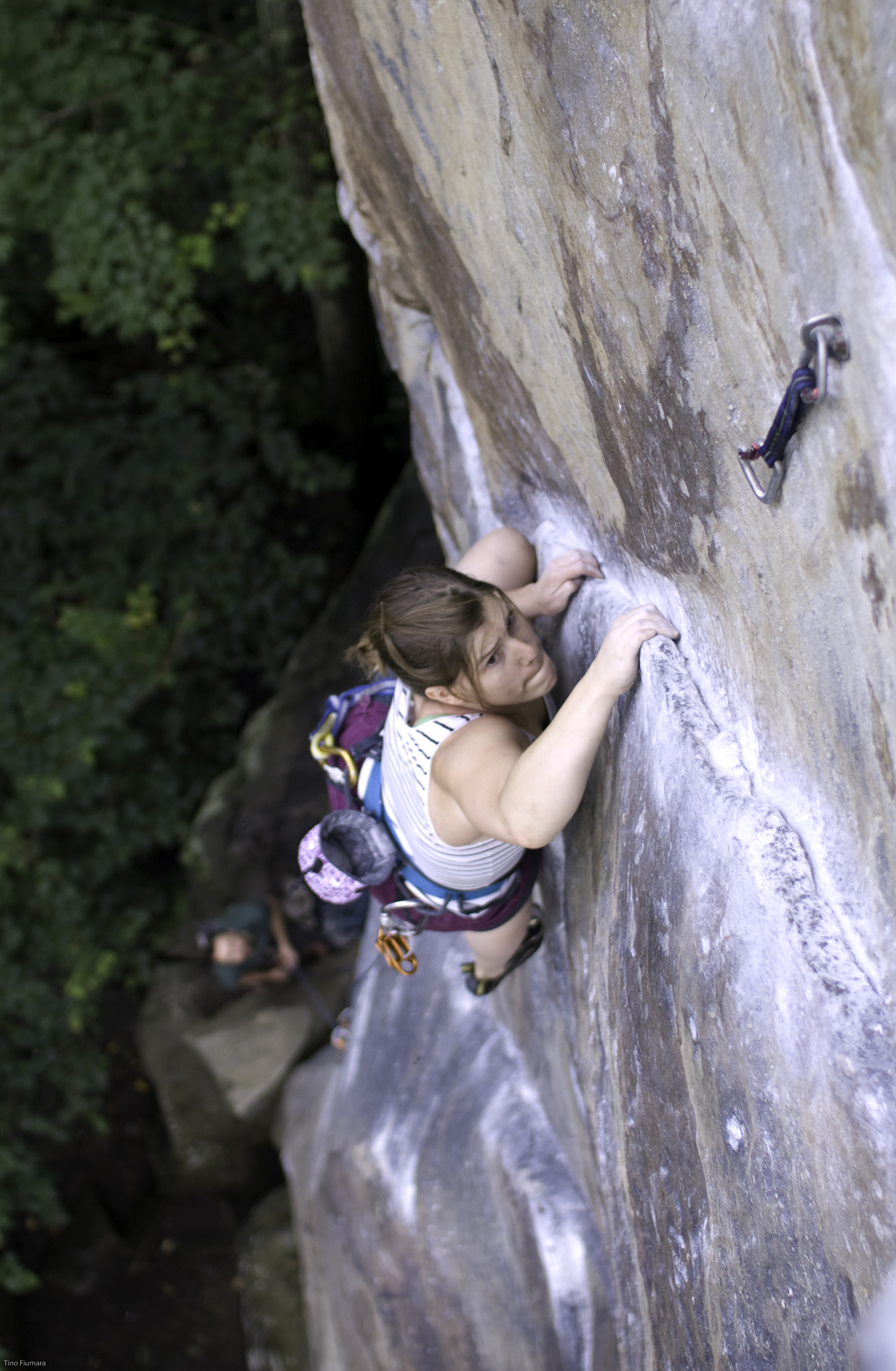 Local Access Alerts - Gunks 2018 Peregrine ClosureThe annual Gunks closure has been announced. For more information check out the Gunks Climbers' Coalition website.