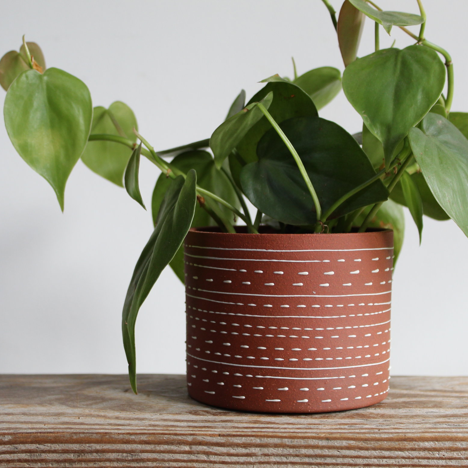 Victoria Buchler Ceramics -