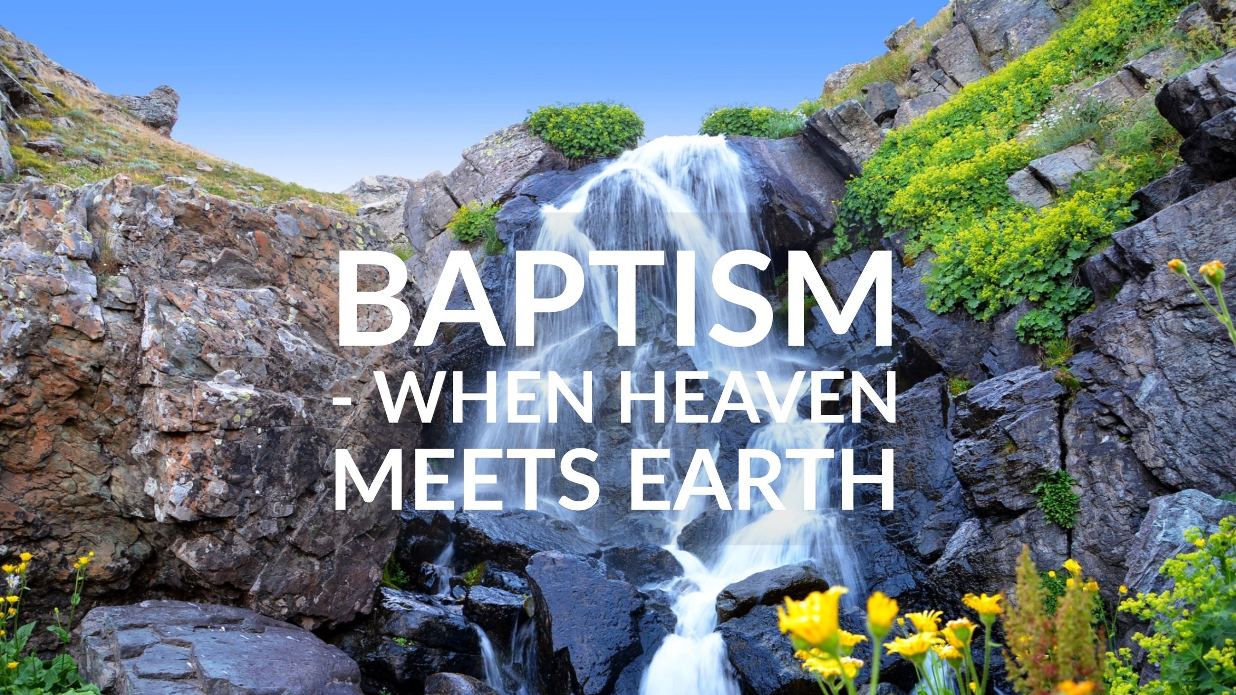 baptism. donowsley.com.jpg