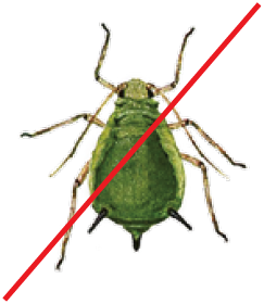 UVB repels pests, as deep UV highly repulses or kills common pests that affect plants.