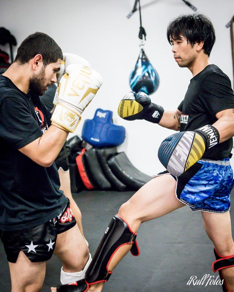 Adults - Open TrainingBeginners Muay Thai ClassTechnical Sparring ClassAll levels Kickboxing/Muay Thai ClassBoxing