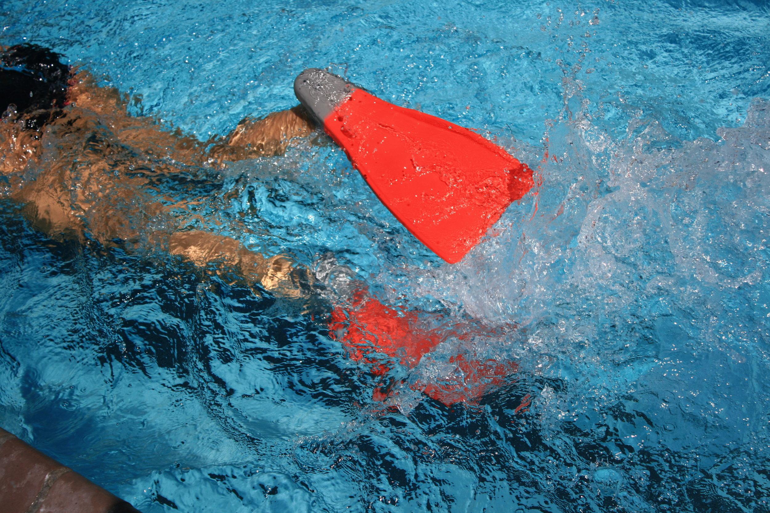 healthquestswimmasters.jpg