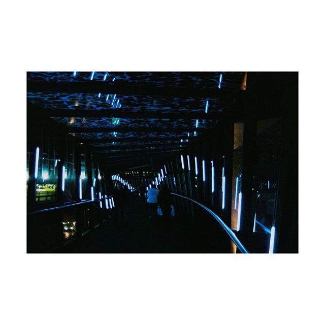 waterbridge . . . . . . . . . .  #photography #filmphotography #film #35mm #35mmfilm #art #artphotography #negativefeedback #zineart #photographyzine #zine #glitchart #glitch #digitalart #distorted #glitche #analoguedistortion #distortion #artistsofinstagram #inspiration #artoftheday #gallery #instaart #creative #artwork #artist #art