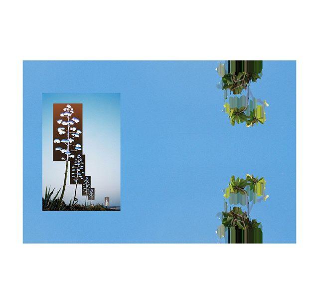 avatar / a distorted glimpse . . . . . . . . . .  #photography #filmphotography #film #35mm #35mmfilm #art #artphotography #negativefeedback #zineart #photographyzine #zine #glitchart #glitch #digitalart #distorted #glitche #analoguedistortion #distortion #artistsofinstagram #inspiration #artoftheday #gallery #instaart #creative #artwork #artist #art