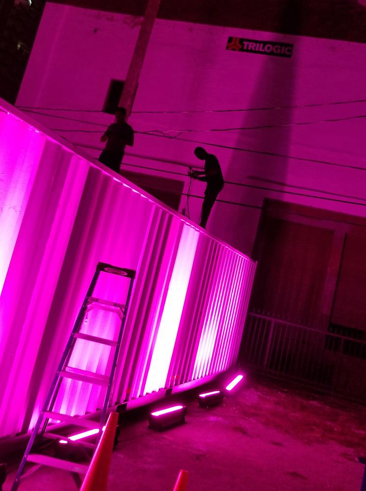 Guys Working/(~hot) pink Satellite, Miami