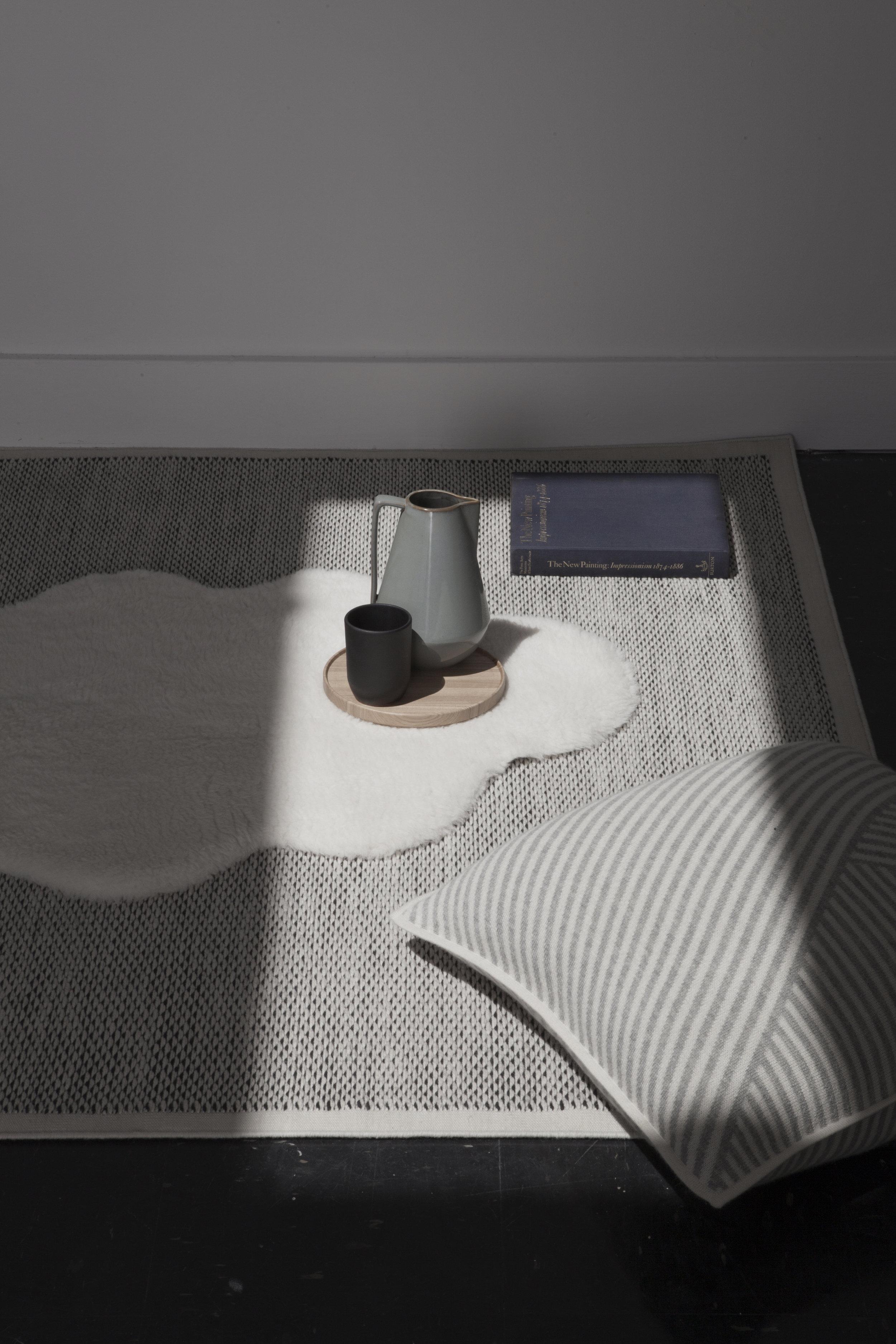 Lynxx Area Rug in a home environment.