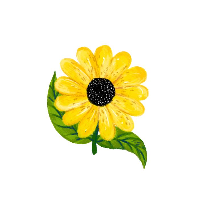 Sunflowers depicting the haldi ceremony.