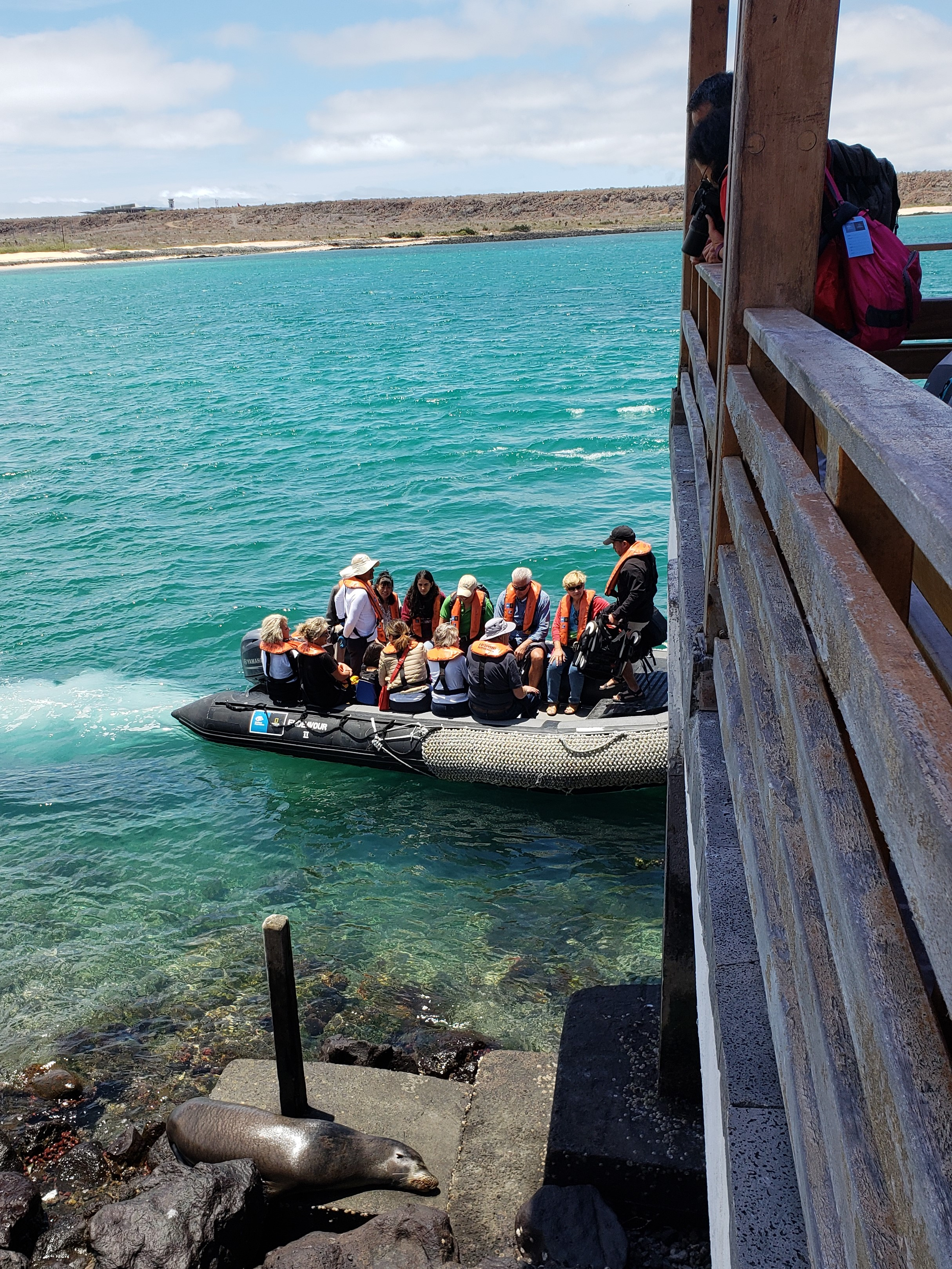 Our first zodiac ride, near a sea lion!  Photo by Alison Travis