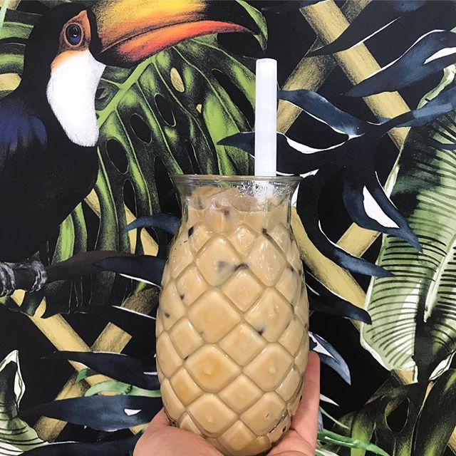Man it's hot out there today Nelson!! Good thing we've got iced cold @flightcoffee to help cool you down! @floraandforest_ I know you want one 😉 • • • • • • • #jaksisland #icedcoffee #flightcoffee #oaklandsmilk #summer #hot #coffee