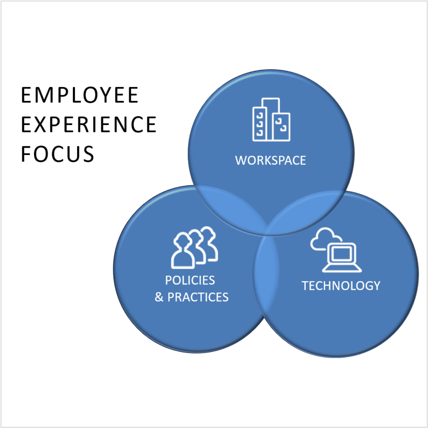 Client-Mazda; employee experience focus