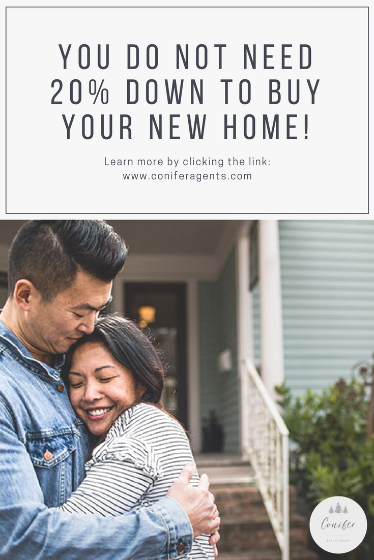 You DO NOT Need 20% Down to Buy Your new home! (1).png