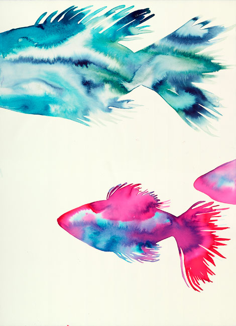 School of Fish (B)
