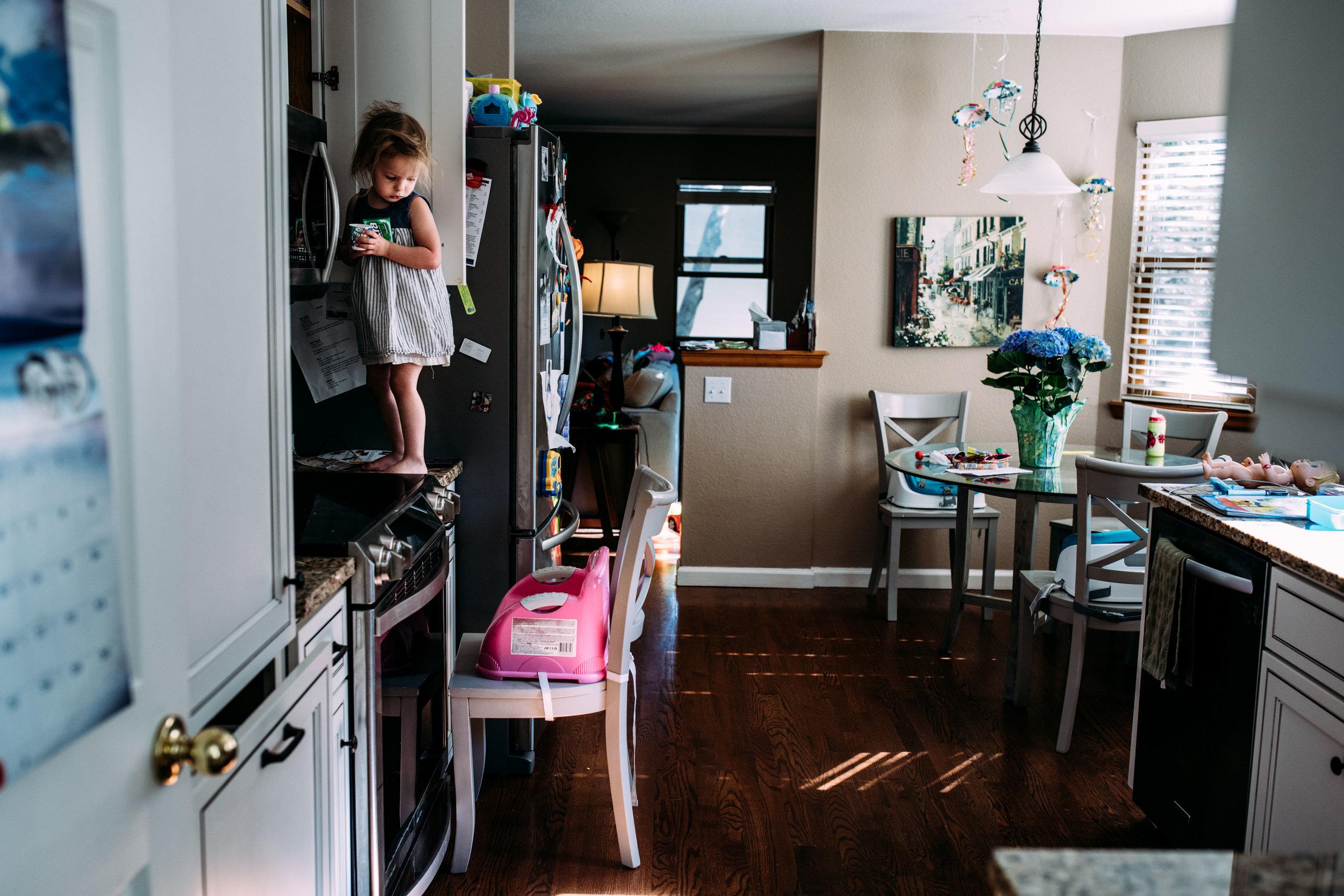seattle family photographer anna nodolf