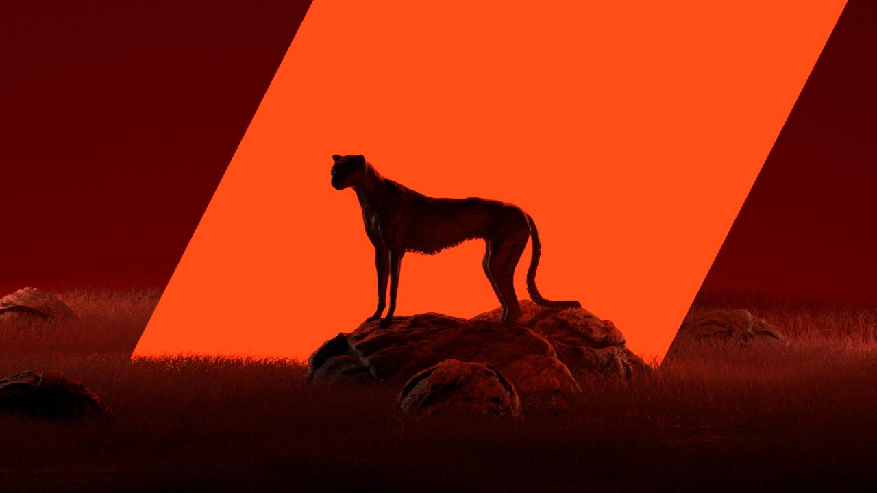 Cheetah_Landscape_03070.jpg